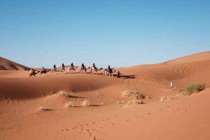 דבר פלא? האם דתן ואבירם יצאו ממצרים? פרשת בשלח
