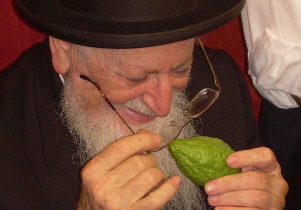 הרב-מרדכי-בודק-אתרוג