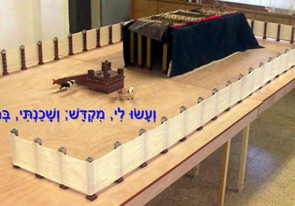 מדוע רק משה הצליח להקים את המשכן? פרשת פקודי