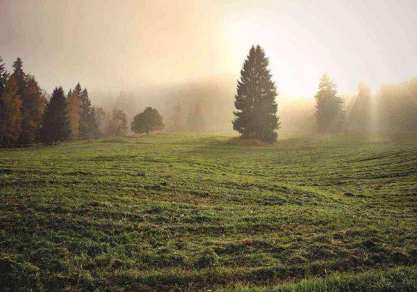 קיום כל המצוות בשלימות שומרת את היהודי מלחזור בגילגול